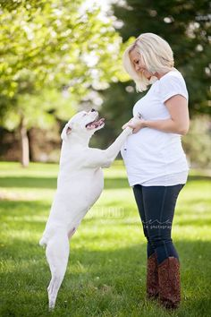 Maternity session with dog. We love to take maternity shots with dogs - see our images on our website at http://jenvazquez.com | Jen Vazquez Photography
