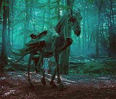 A thestral carriage ride . Harry Potter Cosplay, Harry Potter Cast, Harry Potter Universal, Harry Potter Characters, Harry Potter World, Magical Creatures, Fantasy Creatures, Thestral Tattoo, Hogwarts