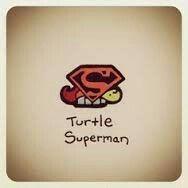 Turtle Superman by Cute Turtle Drawings, Cute Animal Drawings, Cute Drawings, Tiny Turtle, Turtle Love, Cute Turtles, Baby Turtles, Sheldon The Tiny Dinosaur, Kawaii Turtle