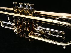Taylor Trumpets make high quality custom brass instruments - the latest thinking in trumpet design teamed with traditional craftsmanship. Jazz Trumpet, Architecture Tattoo, Education Humor, Wedding Tattoos, Musical Instruments, Clarinets, Geek Stuff, Brass, Outlander