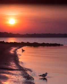 Sunrise - Conimicut Point, Warwick, RI  Available at: www.charlesmorrisonphotography.com         #VisitRhodeIsland