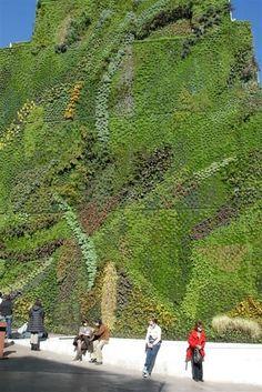 15 Living Walls, Vertical Gardens & Sky Farms - Page 19 of 28 Landscape Design, Garden Design, Vertikal Garden, Green Facade, Green Roofs, Green Architecture, Garden Living, Foto Art, Urban Farming
