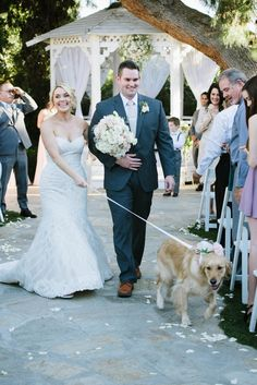 Bride and groom exit ceremony with golden retriever