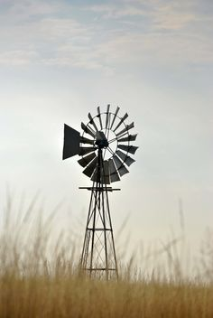 Windmill, got a windmill for Christmas, dream come true.   Need backyard to have grasses like this.