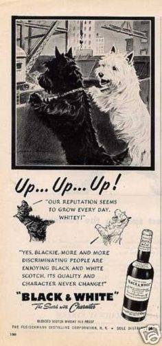 Scottie and Westie ads