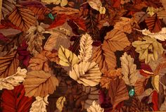 Autumnal leaves Autumnal leaves made up from a broad assortment of natural veneers, with the two beetles in abalone.  The depth of design is achieved by sand shading the leaf edges.   Sample available: 460 x 360mm  Commission