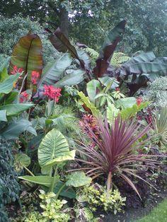 Tropical Planting Scheme in St James Park, London.