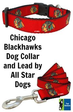 23933ce75 Chicago Blackhawks Dog Collar and Lead by All Star Dogs - Show off your dogs  team