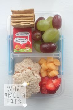 Toddler Bento Lunch