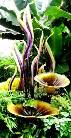 "Create Every Day: Dale Chihuly ""Glass in the Garden"" Exhibition (part 1)"