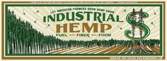 History Meaning, Cannabis Plant, Missouri, Hemp, Industrial, How To Apply, Let It Be, Mary, Rat Race