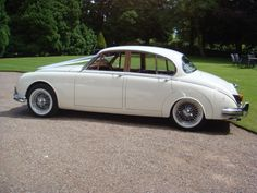 White Jaguar Mark 2