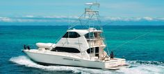 Opulenceis a Riviera which is your luxury choice for leisure cruising & island hopping, game fishing, surfing or diving and island-resort transfers in Fiji. Sport Fishing Boats, Island Resort, Family Holiday, Fiji, Holiday Destinations, Boating, Diving, Tourism, Cruise