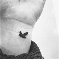 L'oiseau en plein vol
