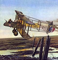 1917 01-07 The sergeant and the cow - Merv Corning 1917, January 7. Sergeant Thomas Mottershead of No.20 Squadron and his observer Lieut. W.E. Gower, in a F.E.2D were attacked by a flock of Albatros...