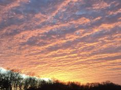Early Morning Light. Early Riser. Sunrise. Mallory Hazel.