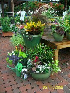 Callowayu0027s Garden Center In Flower Mound, Texas Design Container Garden  Collections For Texas Backyards.