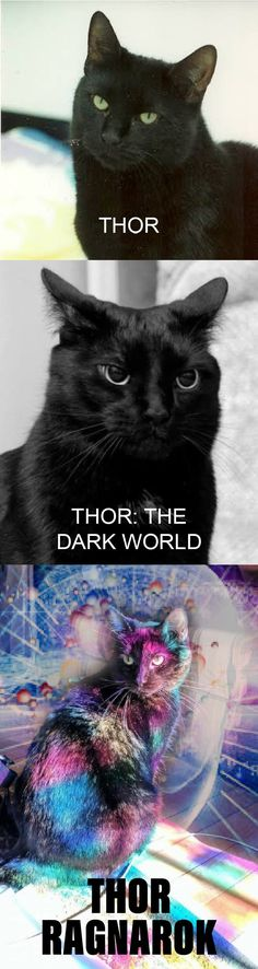 Thor franchise in a nutshell