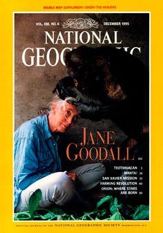 """Diciembre 1995 , Reconociendo los 35 años de trabajo pionero, National Geographic presenta la primatóloga Jane Goodall  presentada con  la Medalla Hubbard de la sociedad como un tributo a su influyente estudio de los chimpancés, descrito por el ex presidente de la Sociedad Gilbert M. Grosvenor como la """"investigación de campo continuo más largo jamás realizado sobre un animal salvaje."""""""