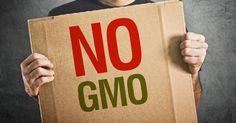 OGM: il 77% degli italiani è contrario