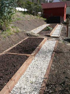 Easy Diy Garden Projects You'll Love Hillside Garden, Veg Garden, Terrace Garden, Edible Garden, Terraced Vegetable Garden, Vegetable Gardening, Organic Gardening, Sloped Backyard, Sloped Garden