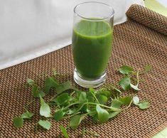 Groene Smoothie met winter-postelein - Groene bladgroenten in de winter
