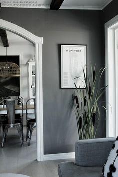 kaveldun, cigarrblomma, cigarrblommor, växter som ser ut som cigarrer, vardagsrum, växt, växterna, korg, korgar, korgen, gråmålad vägg, gråa väggar, inspiration,