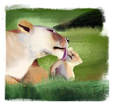 Lions sketch 2