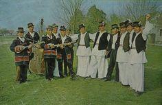 Drenovci, Cvelferija (Slavonija)