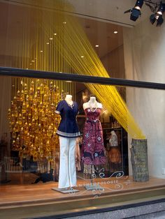 Anthropologie Window - honey bears & yellow ropes