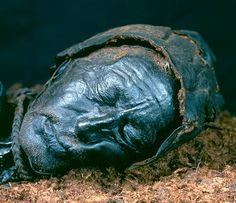 The Tollund Man, found preserved in a bog in Denmark. He's well over 2000 years old. The head is surprisingly well-preserved, including his fur-lined leather hat, hair, facial whiskers, the braided line . . .