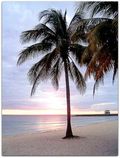 this is the beach I grew up going to! Its only 20 minutes from my home town! Ecuador, Puerto Rico, Matanzas Cuba, Archangel Tattoo, St Michael, Beach Trip, Cool Photos, Around The Worlds, Vacation