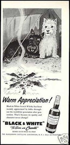 Black & White - Warm Appreciation