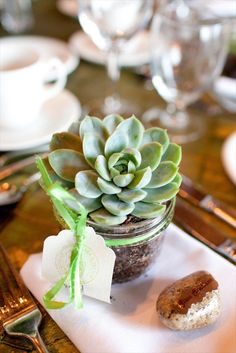 The prettiest succulent favor in a mason jar.  Photo: Vasia Photography. |  http://emmalinebride.com/decor/mason-jar-ideas/