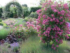 Garten der Sinne – Flip – Picasa Уеб Албуми