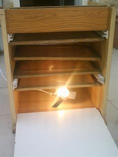 Way back when, I had read some posts extolling the virtues of dehydrators. They were good to make fruit leather, jerky, dried/candied fruits. Canning Supplies, Canned Food Storage, Dehydrator Recipes, Fruit Dehydrator, Dehydrated Food, Farms Living, Homestead Survival, Preserving Food, Diy Projects To Try