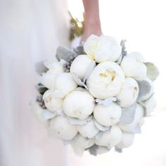Use peonies and lamb's ear for this gorgeous bouquet.