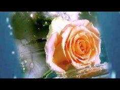 SOK BOLDOG SZÜLINAPOT KÍVÁNOK! - YouTube Flowers, Youtube, Plants, Plant, Royal Icing Flowers, Flower, Youtubers, Florals, Youtube Movies