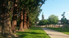 Der Rheydter Hugo-Junkers-Park mit Blick auf die evangelische Hauptkirche Rheydt
