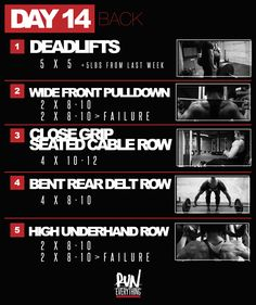 4 Back Workout Plan To Help Sculpt Sexy Back & Shoulder – Lasting Training dot Com Lifting Workouts, Gym Workouts, At Home Workouts, Training Workouts, Workout Exercises, Dana Linn Bailey, Crossfit, Dana Lynn, Workout Days
