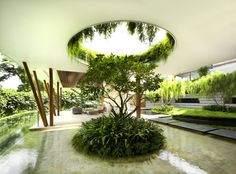 The Willow House by Guz Architects Tropical style garden design. Love the way the circular cutout in the ceiling is mirrored in the garden bed below.