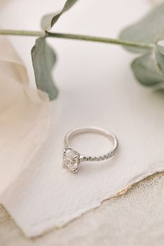 Contemporary Elegance Wedding in the Countryside by Jenna Hewitt Engagement Ring Photography, Jewelry Photography, Wedding Accessories, Wedding Jewelry, Pretty Wedding Rings, Contemporary Engagement Rings, Sterling Silver Wedding Rings, Best Engagement Rings, Make Jewelry