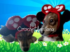 Gorros Tejidos Para Mascotas Perros Y Gatos - $ 160.00 en MercadoLibre