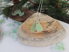 Genuine Sea Glass and Sea Pottery Necklace by MermaidTidesSeaGlass