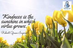 """"""" Kindness is the sunshine in which virtue grows."""" - Robert Green Ingersoll #quotes"""
