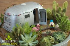 Little trailer in a fairy garden with succulents and other small plants