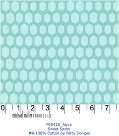 Accent fabric (not sure if it is too much teal for the room)