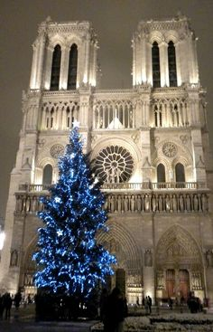 Christmas tree at Notre Dame Cathedral, Paris