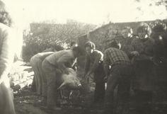 Matanza en Navafria.