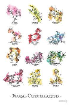 'Floral Constellations – Chromatic' Greeting Card by zoazig Sometime colour is just necessary. / All of the Floral Constellations, colored! Because sometimes choosing just one is too hard. Horoscope Tattoos, Taurus Tattoos, Zodiac Sign Tattoos, Astrology Tattoo, Mini Tattoos, Body Art Tattoos, Tribal Tattoos, Small Tattoos, Tatoos